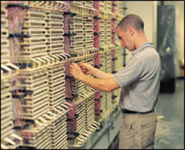 In good company, from bidding to bandwidth | Cabling